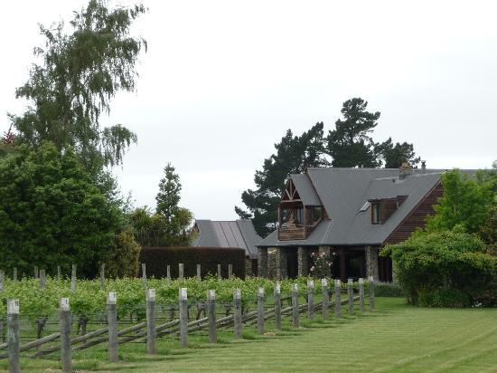 Stonehaven Homestay: Stonehaven amid vineyards