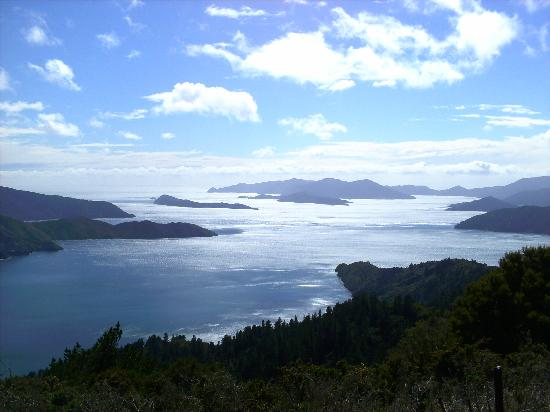 Natural Encounters Walks - Day Tours: Eatwells Lookout - off the main track a short steep hill, but so worth it