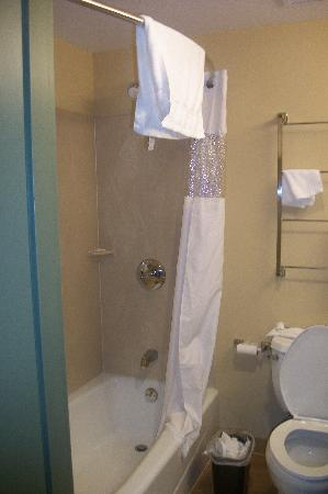La Quinta Inn & Suites Brooklyn Downtown: Bathtub