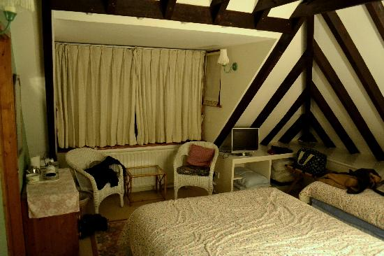 South Lodge Bed and Breakfast: Twin room
