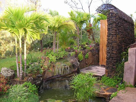 The Palmwood: Private outdoor shower with flowers and waterfall