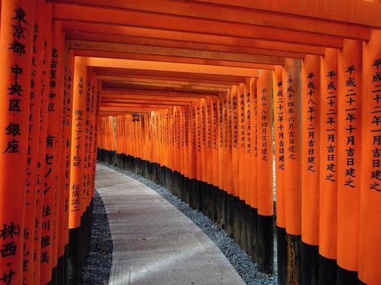 Gite di un giorno a Osaka