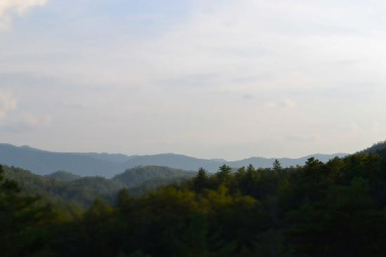 Blue Smoke Mountain Cabins: View from the back porch of Windrider