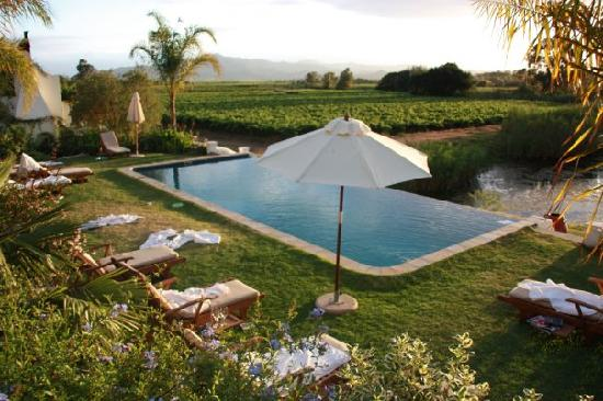 Rosendal Winery & Wellness Retreat: View from the terrace at the restaurant