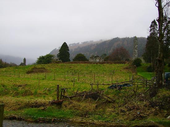 Azalea Lodge: verde Irlanda