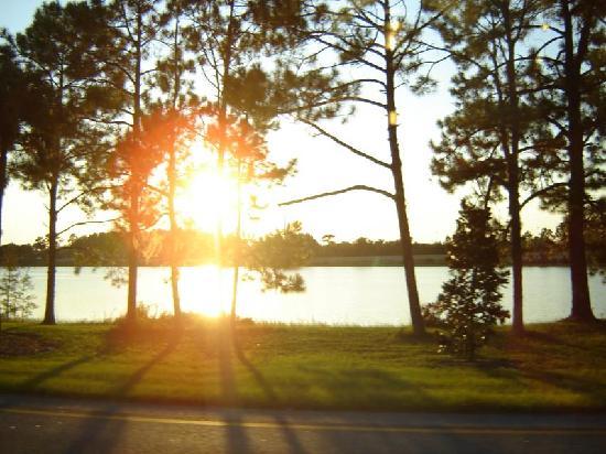 Orlando, FL: Tarde soleada de Octubre