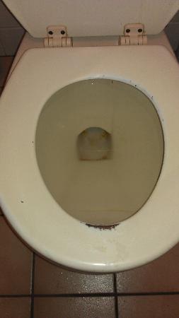 Seacrest Motel & R.V. Park: unclean toilet