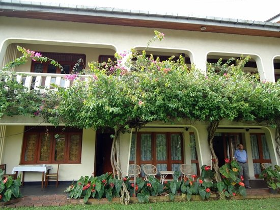 Royal Tourist Lodge: garden