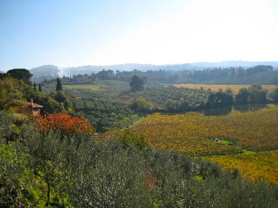 Frascati, Italy: The view from L'Olivella