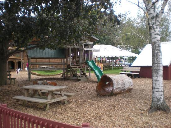 Oregon Dairy Country Restaurant : Playground