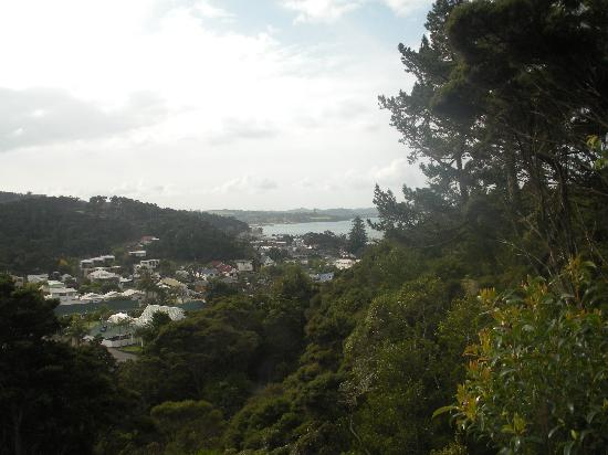 Allure Lodge Paihia : cloudy view from the cottage