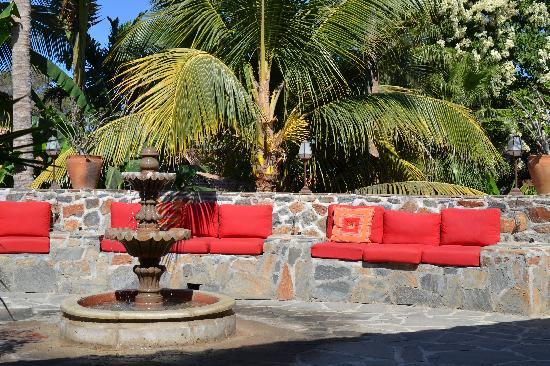 Todos Santos Inn : Garden1