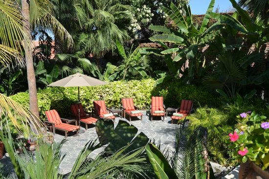 Todos Santos Inn: Garden2