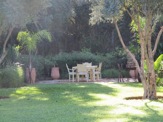 Dar Zemora : garden