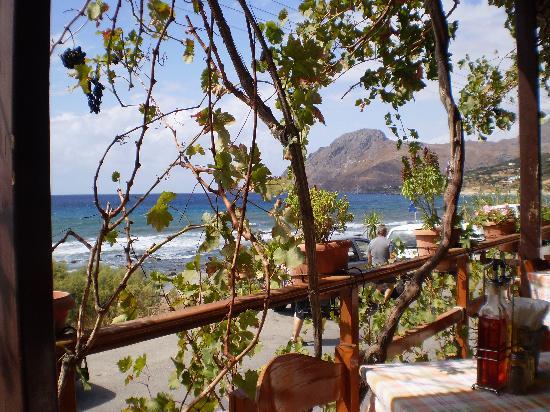 Apanemo: vue de la terrasse du restaurant