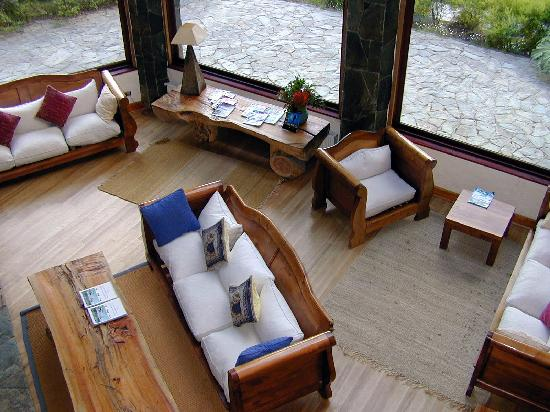 Petrohue Lodge: Area de lectura