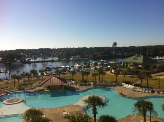 Barefoot Resort Yacht Club: pool