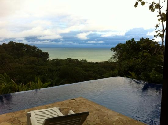 TikiVillas Rainforest Lodge : looking out from the lodge