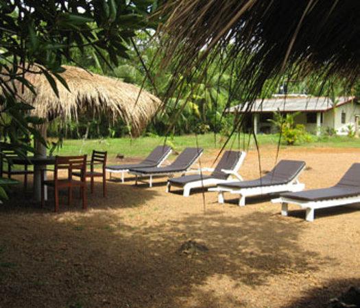 Mangrove Villa: Sun bed