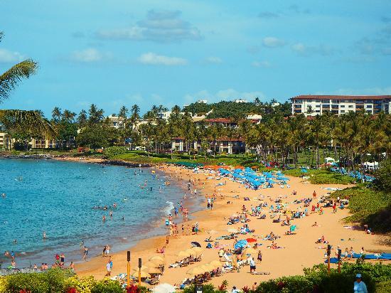 Four Seasons Resort Maui At Wailea Beach From The Serenity Pool