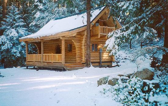 Crystal Mountain, WA: Romantic Honeymoon Cabin for 2.