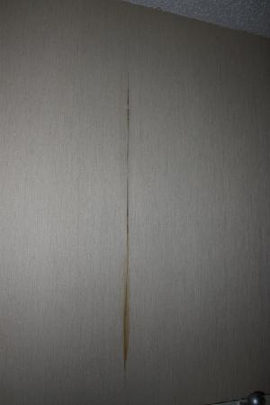 "Hilton Houston Plaza/Medical Center: Wallpaper seam (in an upgraded ""suite"")"