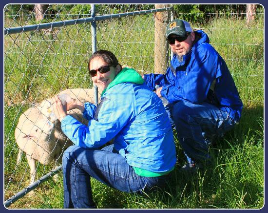 Glacial Rock B & B: Sarah took one of us feeding the sheep