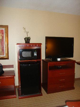 Hampton Inn & Suites Redding: TV