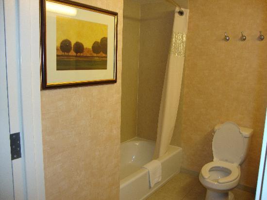 Hampton Inn & Suites Redding: Clean Bathroom