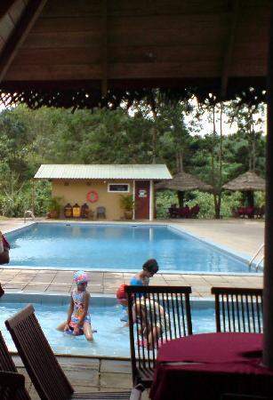 KKG Holiday Resort : pool