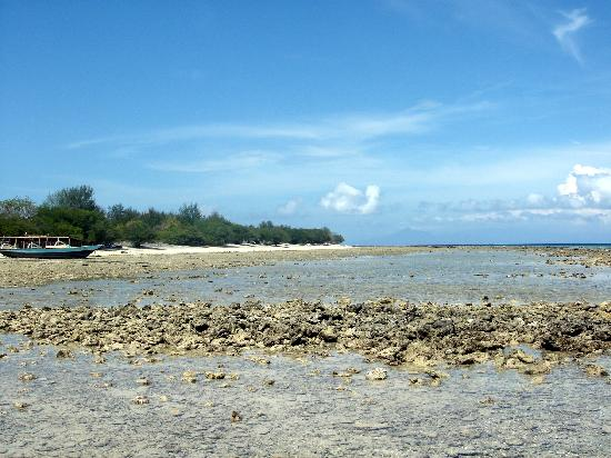 Alam Gili: The beach out the front