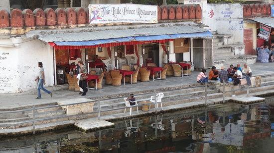 The Little Prince Restaurant: udaipur little prince restaurant