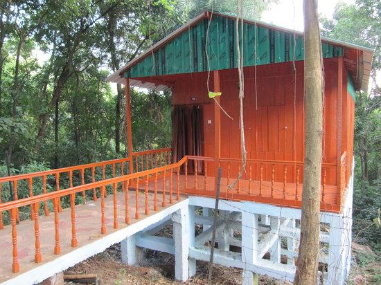 Taptapani, India: Cabin
