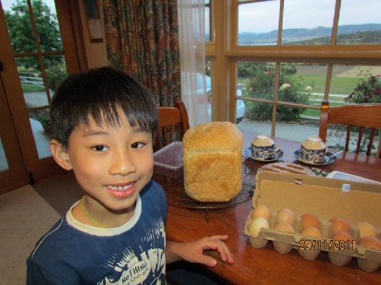 Cornwall Cottage Bed & Breakfast: Freshly-baked bread and eggs.
