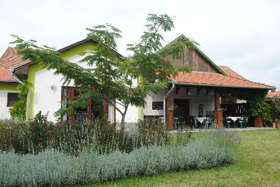 Tisza Lodge: Tuin en terras