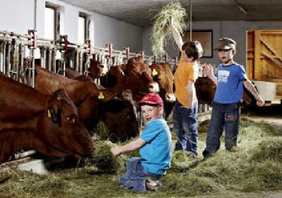 Kinderhotel Felben: Urlaub auf dem Bauernhof