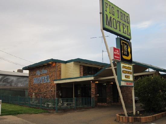Fig Tree Motel: 外観