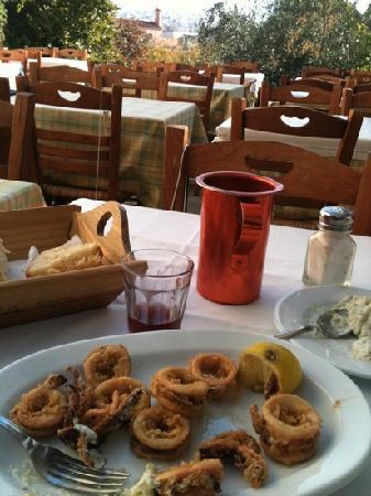 Taverna O Thespis : delicious calamari lunch at Thespos