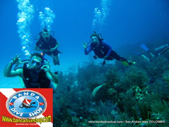 Banda dive shop san andres all you need to know before you go with photos tripadvisor - Dive shops near me ...
