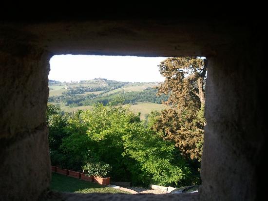 Podere Le Rondini: Vista dalla camera nel fienile