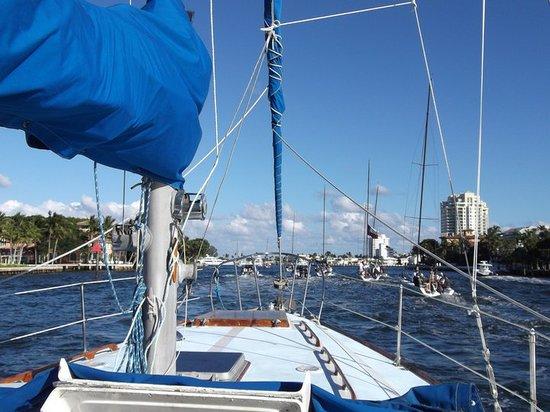 Island Adventure Sailing