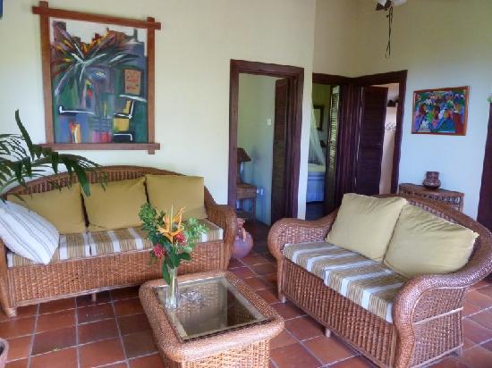 Villa Pomme d'Amour : Great living area