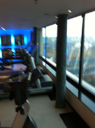 โรงแรมชไตเกนเบอเกอร์แอร์พอร์ท: Fitness