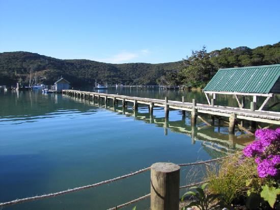 The North Cove & Kawau Lodge's Wharf