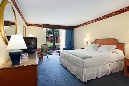 Orlando Sun Resort Hotel: Standard King