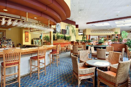 Orlando Sun Resort Hotel: Lobby Lounge
