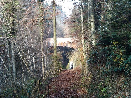 Grenzwanderweg Flawil: Holzbrücke unterhalb Egg