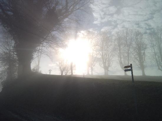 Grenzwanderweg Flawil: Wenn der Nebel weicht... (Nähe Kloster Magdenau)