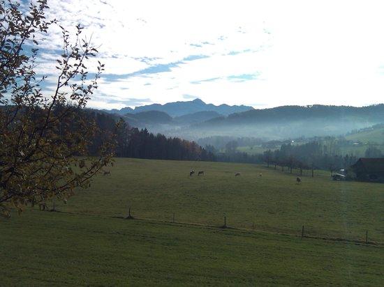 Grenzwanderweg Flawil: Aussicht auf den Säntis (Nähe Degersheim)
