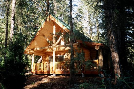 Green Acres Lakeside Resort Salt Spring Island: Forest Chalet